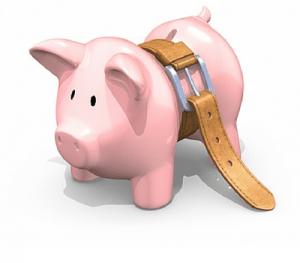 budgetpig (2)